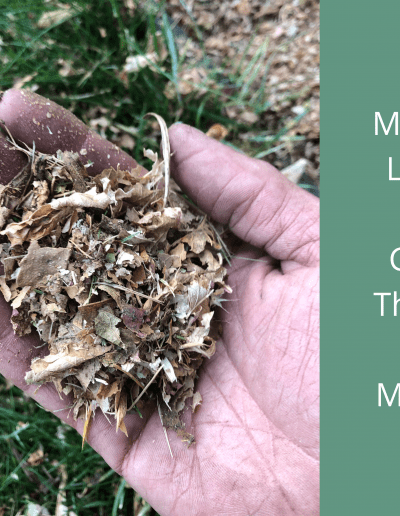 Mulched Leaves Added Back Into A Garden calgary gardener gardening weeding planting flowers floral design gardening company